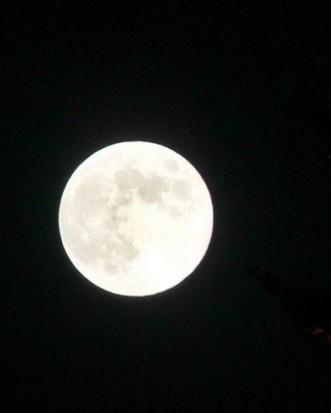 中秋节的圆月