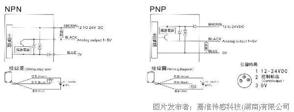 npn电路模拟 gif