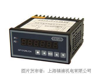GEMPLE SSI信号转换显示仪表GP1312RL