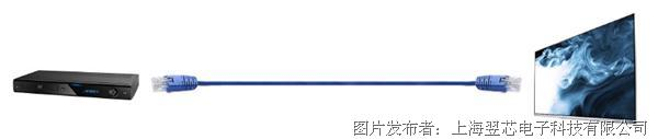 ESEMI翌芯工業電子 VS100 Product Family