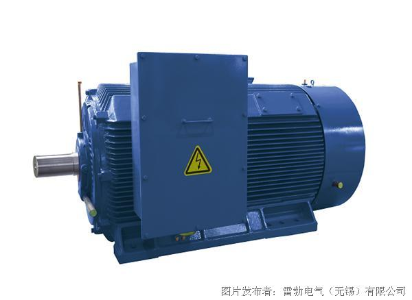 marathon  HCM系列高压高效电机