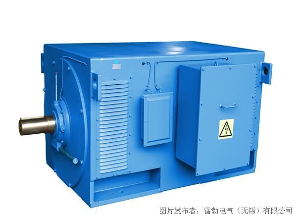 marathon  HDP系列高压开启式电机