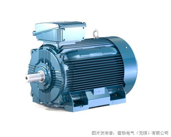 雷勃电气 marathon SCA系列低压变频高速电机