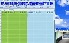电子称重仪表HZ3100N电子秤数据直通电脑表格