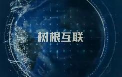 树根互联技术有限公司宣传片