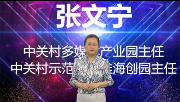 嘉宾致辞-中关村多媒体产业园张文宁主任