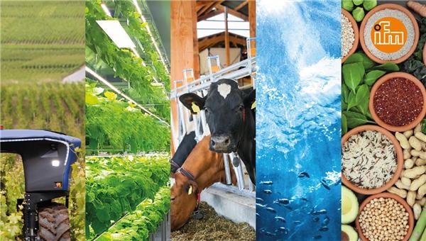 ifm致力于食品生产的数字化与可持续发展,提供面向未来的食品供应解决方案